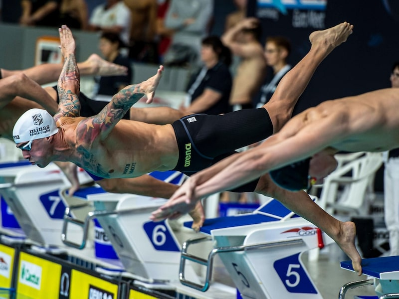 Men's competition swimsuits: swimmers diving into a pool